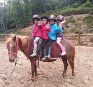 poneys à 4 compress
